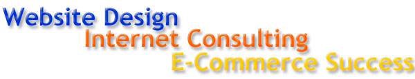 Website Design - Internet Consulting - E-Commerce Success